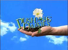 230px-pushing_daisies_logo.jpg